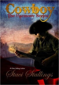 Cowboy book by Staci Stallings