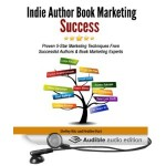 Indie Author Success