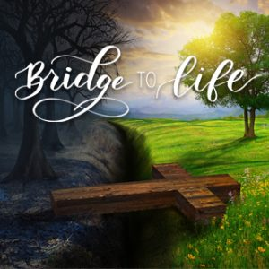 Bridge to Life